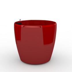 Classic 3105 Czerwona